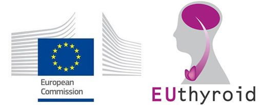 EUthyroid featured as 'success story' by European Commission